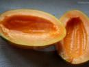 la piata pepene galben 130x98 La piata