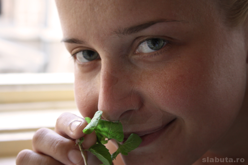 miroaseam menta Limonada naturala, racoritoare si sanatoasa cu muuulta menta