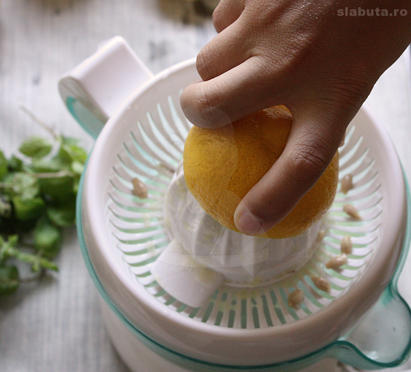 stoarcere lamaie Limonada naturala, racoritoare si sanatoasa cu muuulta menta